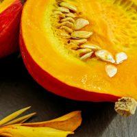 pumpkin-1678889_1920